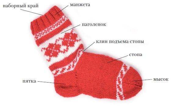 Строение носка